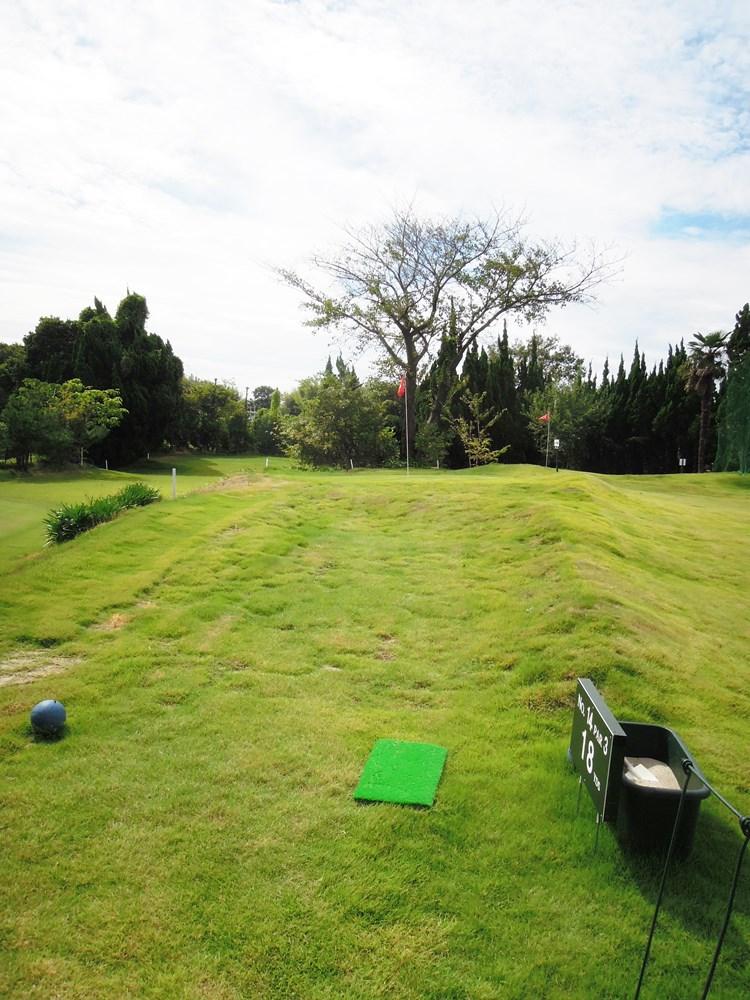 14ホール 傾斜がきついグリーン。グリーン手前は凸凹の芝生。落としどころは1点。
