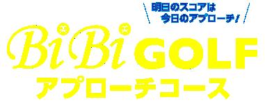 BiBiGOLFアプローチコース(ビビゴルフ アプローチコース)